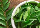 Miodla indyjska. Poprawia trawienie, obniża cholesterol i redukuje stres