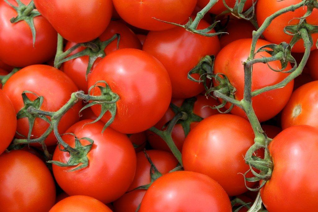Polskie pomidory gruntowe mają intensywny smak i zapach