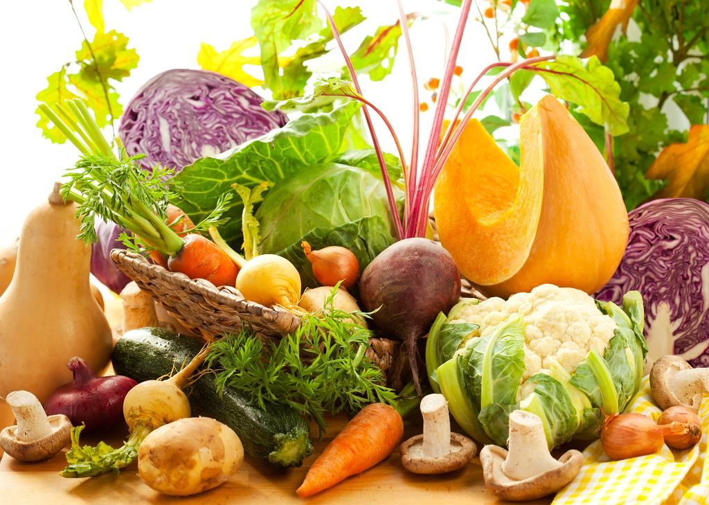 Biodostępność składników odżywczych