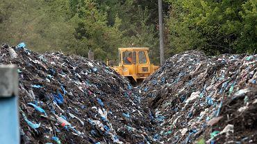 Województwo łódzkie. Policja zatrzymała mężczyzn, którzy chcieli zakopać w żwirowni ponad 100 ton odpadów