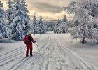 Polska zim�. Najpi�kniejsze trasy na bieg�wki