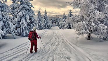 Karkonosze - Jakuszyce / fot. Szymon Nitka / Flickr.com CC BY