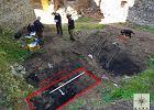 Średniowieczna legenda o zamku Grodno okazała się prawdą [ZDJĘCIA]