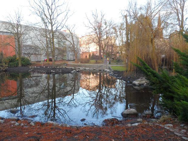 Zdjęcie numer 0 w galerii - Do stawu w parku wróciła woda. Wygląda jak nowy