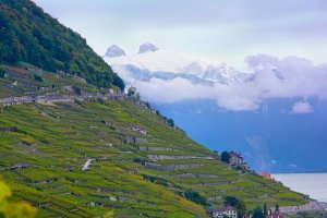 Szwajcaria. Co za widoki!