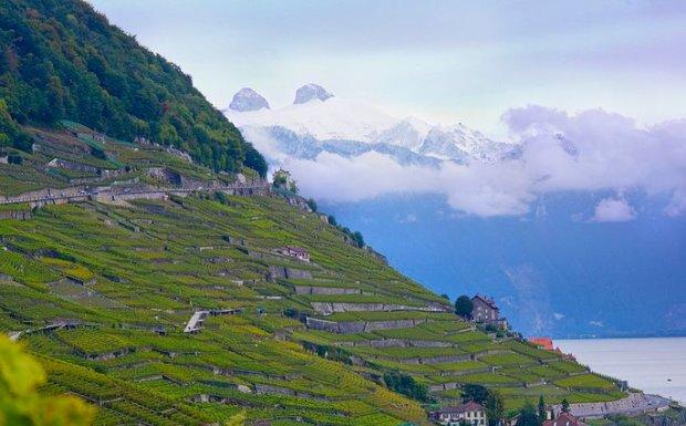 Szwajcaria. Co za widoki