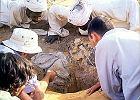 Rafaelion - chrześcijański skarb w Dolinie Nilu. Jak polscy archeolodzy odnaleźli kościół w muzułmańskim Sudanie