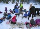 Przedszkolaki na wietrze. Zimny ch�w po norwesku