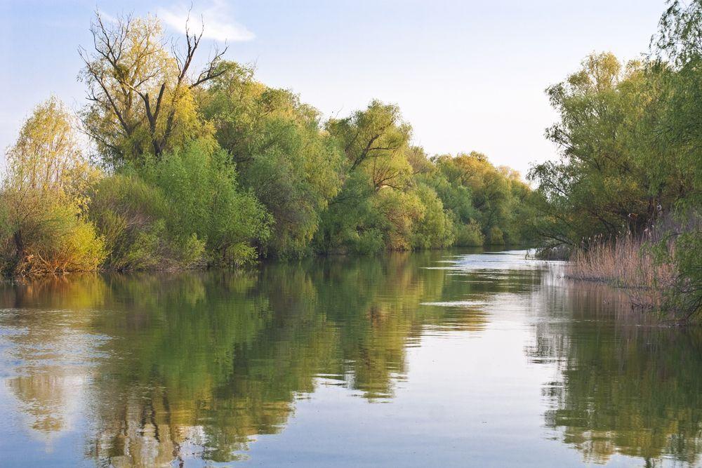 Wąski kanał w delcie. Delta Dunaju, Rumunia / fot. Shutterstock