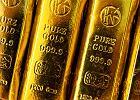 Jak nie dać się oszukać przy kupnie złota? Próba magnesu i inne domowe sposoby