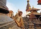 Najlepsze 2011: Azja. Top 10 miejsc