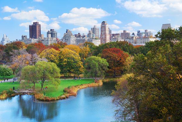 Central Park. Zielona wyspa w centrum Nowego Jorku