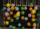 Superkumulacja w Lotto - dzi� do wygrania 50 mln z�