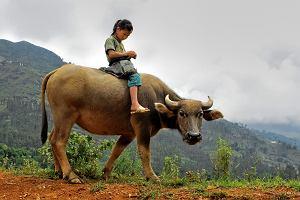 Birma z dzieckiem - inne wakacje