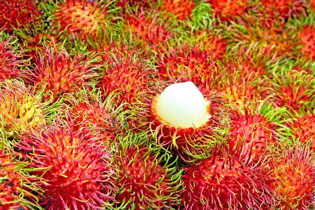 Rambutan - chińska śliwka