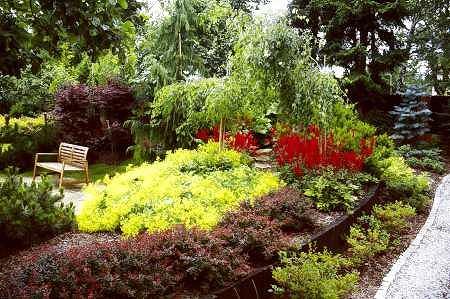 Nasyp ziemny obsadzony drzewami i krzewami. Jest tu kolorowo, zacisznie i zupe�nie nie wida� wjazdu na posesj�, kt�ry znajduje si� za zielon� zas�on�.