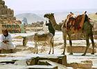 Kierunek Egipt