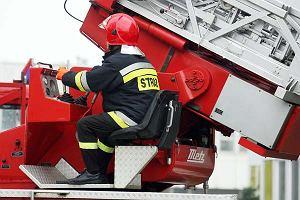 Pożar hali magazynowej w Elblągu