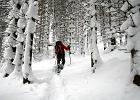 Zimowy urlop. Rakiety w Tatrach
