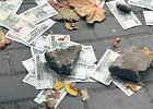 Pazerny złodziej: podarł banknoty i chciał je wymienić
