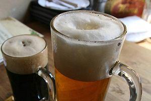 """""""Gazeta Prawna"""": Zdro�eje piwo. Nawet to najta�sze"""