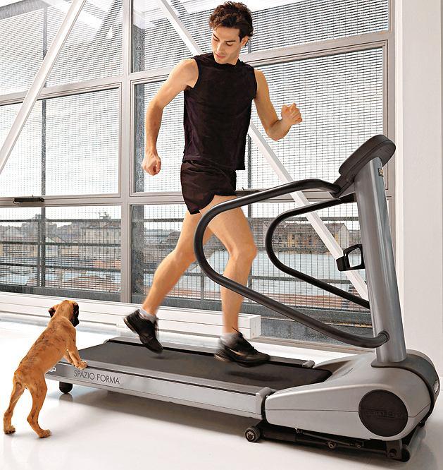 fitness, kardio, mięśnie