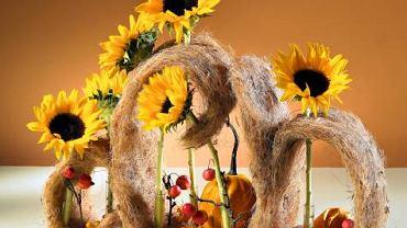 Kompozycja - Słoneczników czar