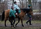 Wyrzucaj� konie ze Skaryszaka. 200 dzieci bez terapii
