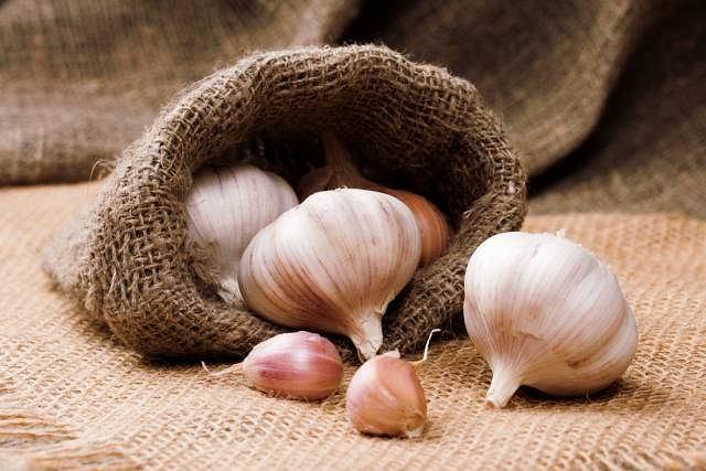 Czosnek w medycynie naturalnej to uznany lek przeciwprzeziębieniowy, a także pogromca cholesterolu