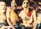 Pi�tek w TV: Benedict Cumberbatch, ostatni Aborygeni i afryka�ski punk [POLECAMY]