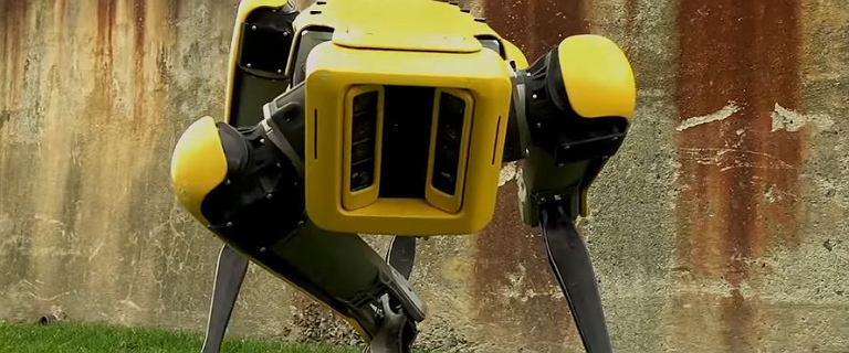 Ten robot dałby sobie radę w ''Tańcu z gwiazdami''. Maszyny zmienią nasz świat
