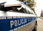 Policja zatrzyma�a dziesi�� os�b z listy poszukiwanych. W ci�gu jednej doby