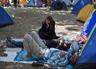 KE przekazuje dodatkowe 1,5 mln euro na imigrant�w w Serbii i Macedonii