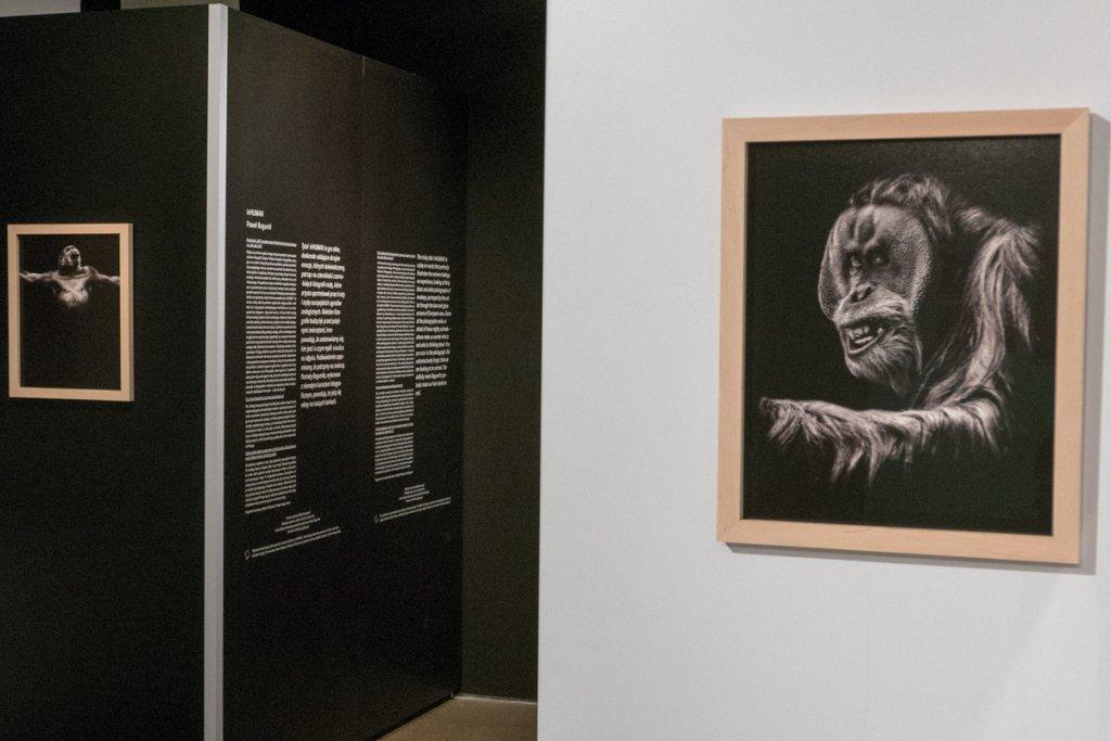 """Wystawa """"inHuman"""" (fot. Patryk Wi�niewski)"""