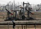 Rosyjska ropa naftowa wciąż tańsza niż przed rokiem
