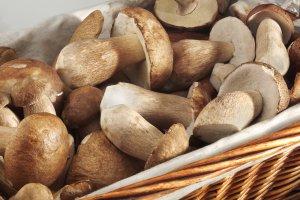 Sos grzybowy i inne potrawy z grzybów w diecie aktywnych