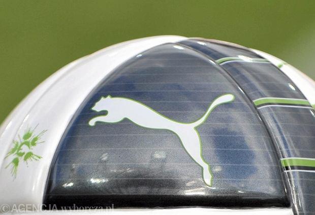 S�d UE zabroni� Polce u�ywania logo Pumy: To nie kot domowy
