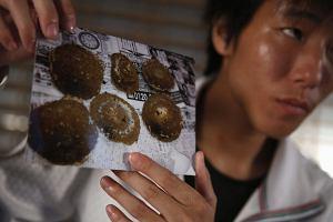 Raport z Fukushimy: Fatalne warunki pracy, niskie zarobki i gangsterzy