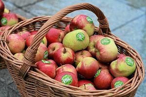 Jabłka jednak górą. Rekordowy eksport polskiej żywności mimo embarga Rosji