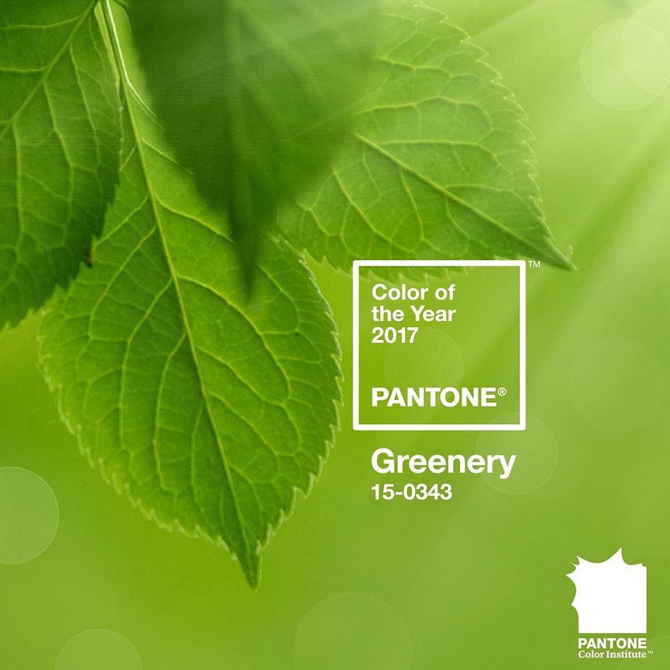 Kolor roku 2017 Pantone - Greenery