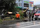 Wichury i burze nad Polską. Setki interwencji strażaków w związku z pogodą. 331 tys. domów bez prądu