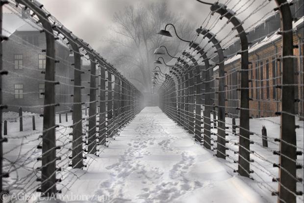 """""""Die Welt"""" nie został ukarany za """"polski obóz koncentracyjny"""""""