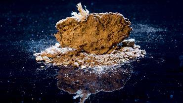 Jeden z koprolitów znalezionych przez Dennisa Jenkinsa w jaskiniach Paisley