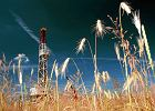 Szef niemieckiej s�u�by geologicznej: Mo�liwy zakaz dla gazu �upkowego