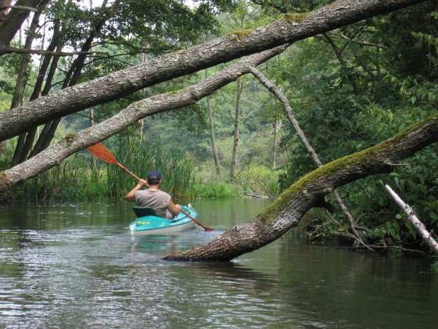 Polak lubi kajak. Fajne, mniej zat�oczone rzeki na sp�yw kajakowy - na weekend albo wakacje [WASZE PROPOZYCJE]