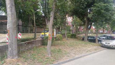 Wycinka drzew przy szpitalu na Pomorzanach
