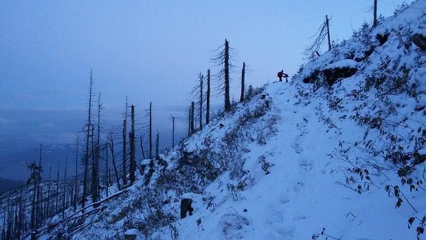 prawie u szczytu Baraniej Góry