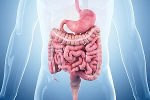 Sekretyna - hormon żołądkowo-jelitowy dwunastnicy