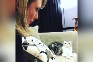 """Taylor Swift i jej kotka na naprawd� DZIWNYM nagraniu. """"Nie wiem, czego ona chce"""". My te� nie. Ale je�li lubicie koty, po prostu musicie to zobaczy�"""