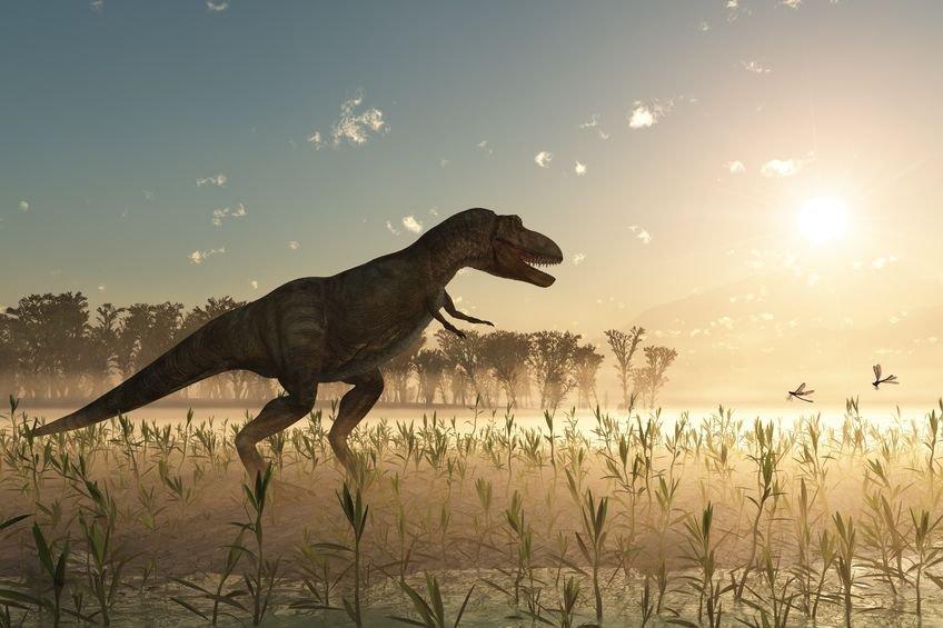 Zdjęcie numer 1 w galerii - Czy dinozaury zginęły inaczej, niż przypuszczano?